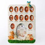 Harriet Bee Terrie Animals Picture Frame Plastic in Orange, Size 19.0 H x 14.0 W x 0.25 D in | Wayfair C89CBFE5A41244638EA3CF541BF684CA