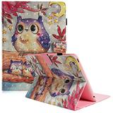 Dteck iPad 2/3/4 Case - 3D Colorful Painting Multi-Angle Viewing Folio Wallet Smart Stand Cover with Auto Wake/Sleep for Apple iPad 2, iPad 3 & iPad 4th Generation with Retina Display, Purple Owl