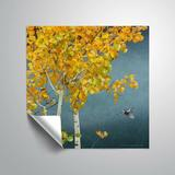 Winston Porter Jowers Aspen & Warblers Removable Wall Decal Vinyl in White, Size 36.0 H x 36.0 W in   Wayfair 0A6D92DE8E4542C0934052993343E5F4