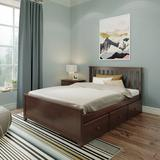 Sand & Stable™ Baby & Kids Amalfi Platform Bed Wood in Brown/Green, Size 38.5 H x 57.75 W x 80.5 D in | Wayfair CC7E50FD27CD4BBF83FDA0237BBAF1BB