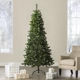 Wayfair Basics® Fir Artificial Christmas Tree in Green, Size 84.0 H x 42.0 W in C46A79B2443A4F7FB965EFD31CD15E29