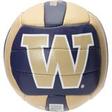 """Washington Huskies Micro Volleyball"""