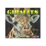 National Book Network Picture Books - Giraffes Paperback