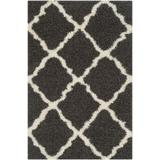 Dallas Shag Collection 4' X 6' Rug in Dark Grey And Ivory - Safavieh SGD257A-4