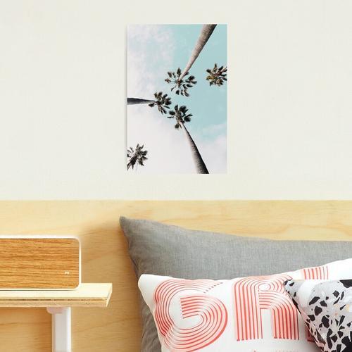 Palmen Palmen drucken Fotodruck