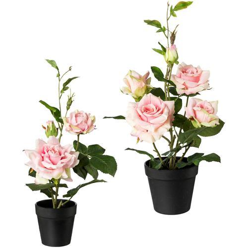 Creativ green Künstliche Zimmerpflanze, 2er Set rosa Zimmerpflanze Zimmerpflanzen Kunstpflanzen Wohnaccessoires