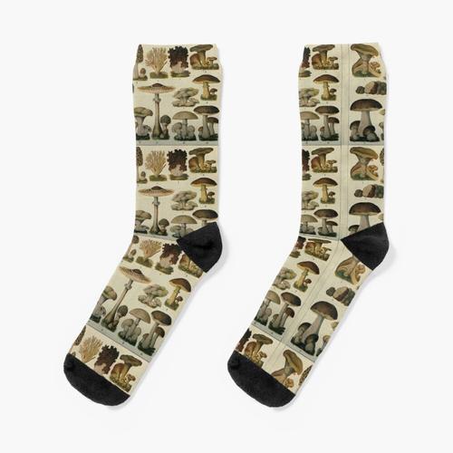 Essbare Pilze Socken