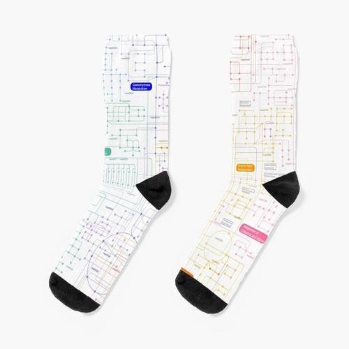 Stoffwechselwege Socken
