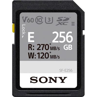 Sony SFE256/T1 Memory Card