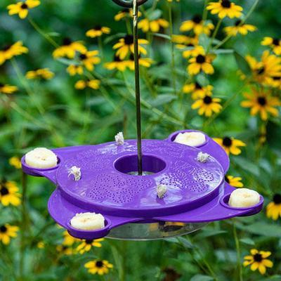 Purple Butterfly Feeder - 1 per package