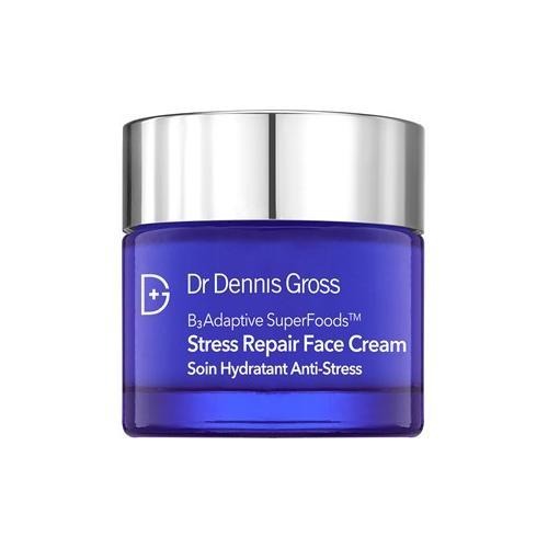 Dr Dennis Gross Pflege Stress Repair Stress Repair Face Cream 60 ml
