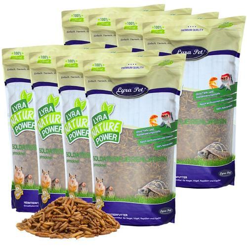 20 kg ® Soldatenfliegenlarven - Lyra Pet