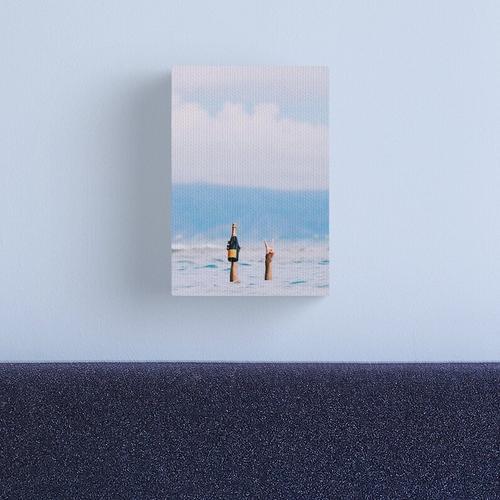 QUICK DIP Canvas Print