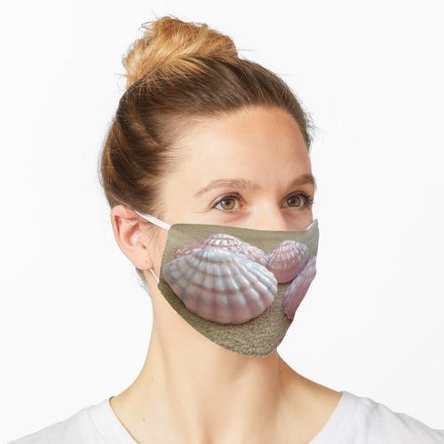 Seife Muschel Jakobsmuschel Seife Foto Maske