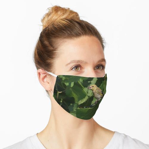 Chloris Chloris Maske