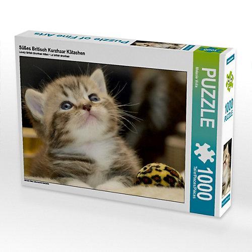 Süßes Britisch Kurzhaar Kätzchen Foto-Puzzle Bild von Melanie Viola Puzzle