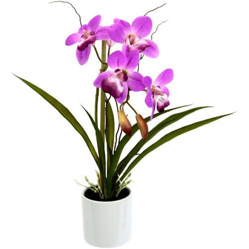 Kunstorchidee »Orchidee«, I.GE.A., Höhe 33 cm, im Keramiktopf