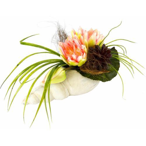 Kunstpflanze »Gesteck Seerose in Muschel« Seerose, I.GE.A., Höhe 20 cm