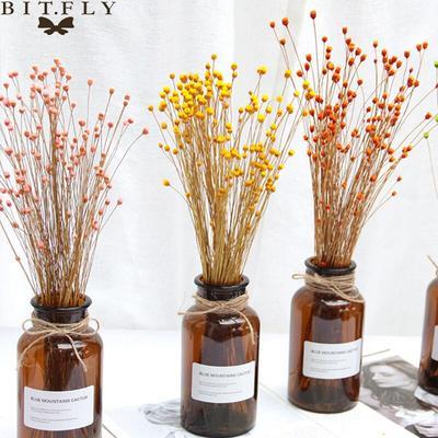 50 pièces fleurs sechees fleurs ...