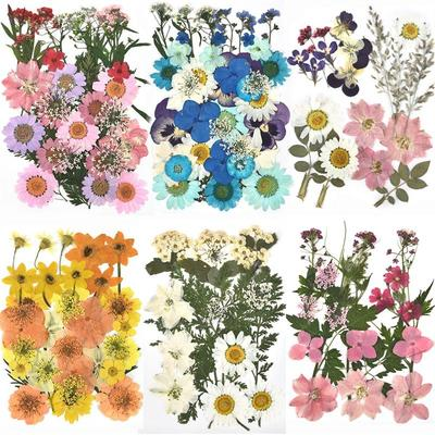 Autocollants de fleurs séchées e...