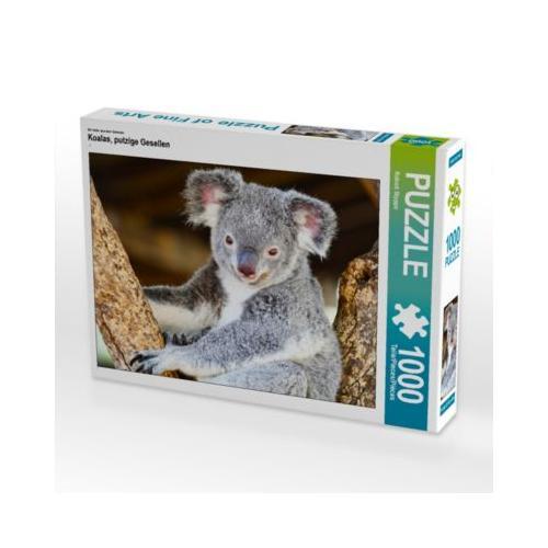 Koalas, putzige Gesellen Foto-Puzzle Bild von ROBERT STYPPA Puzzle