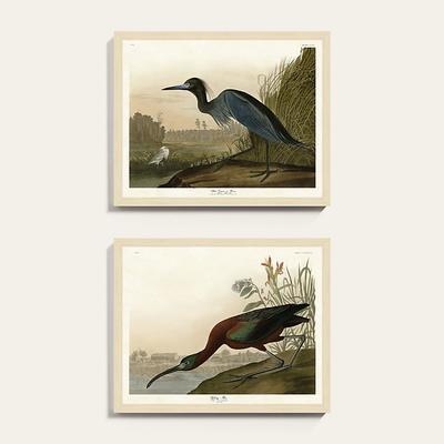 """Marsh Watch Art 23"""" x 27"""" - Ballard Designs"""