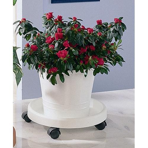 Ruco Blumentopfuntersetzer, (Set, 2 tlg.), Kunststoff, Ø 34 cm weiß Blumentopfuntersetzer Zubehör Pflanzen Garten Balkon
