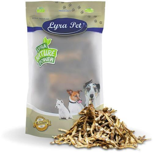 10 kg ® Kleine Fische - Lyra Pet