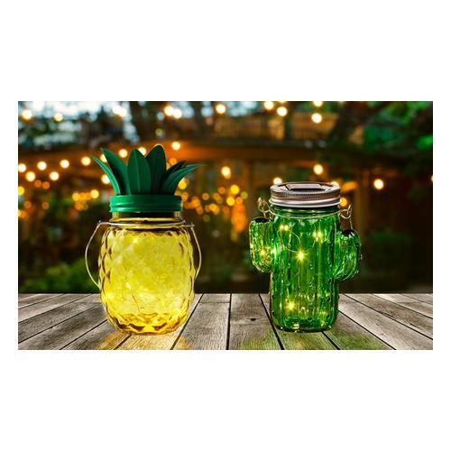 LED-Solarleuchte: Kaktus/1