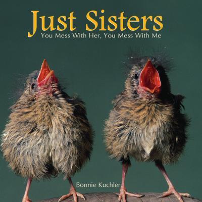 Willow Creek Press Just Sisters Book