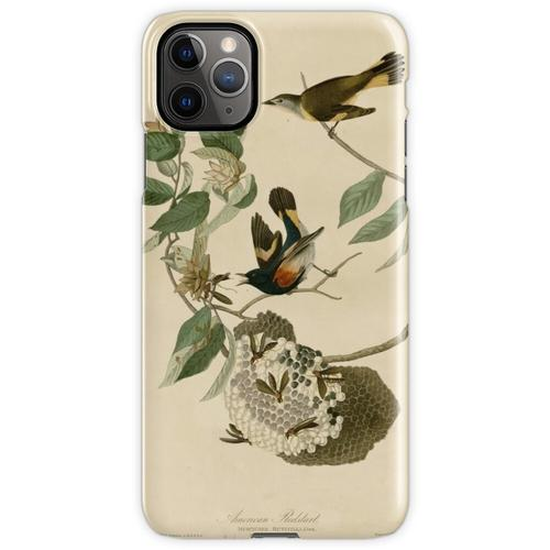 Amerikanischer Gartenrotschwanz, Birds of America iPhone 11 Pro Max Handyhülle