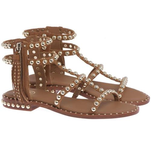 Ash Flache Schuhe