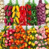 Simulation de légumes en mousse,...