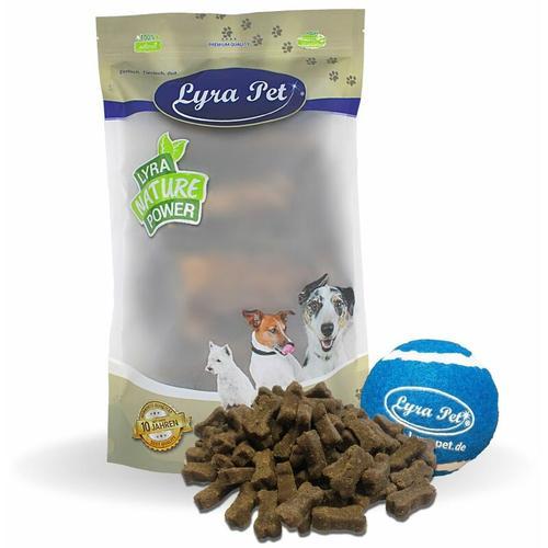 5 kg ® Hundeknochen mit Insekten + Tennis Ball - Lyra Pet