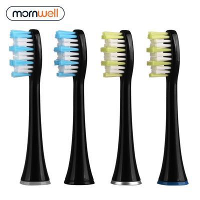 Mornwell – têtes de brosse à den...