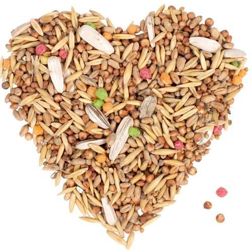 10 kg ® Streufutter HK Bulgarien - Lyra Pet