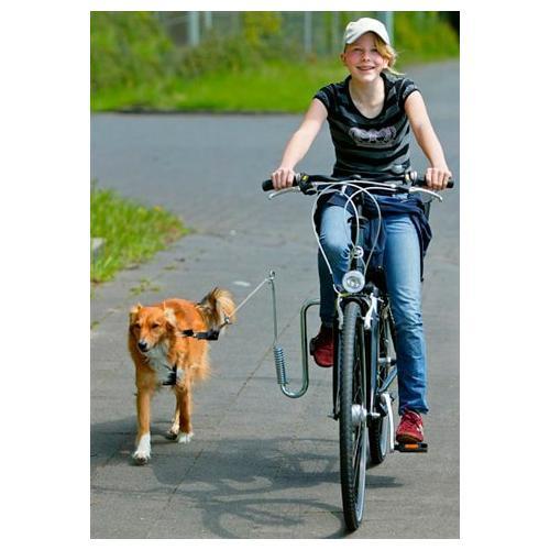 HEIM Fahrradleine, mit Fahrradhalter für Hunde bis 20 kg silberfarben Heim Fahrradleine