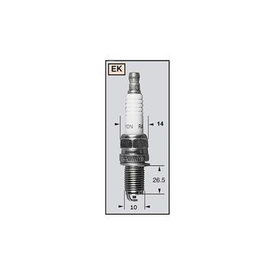 CHAMPION Zündkerze REK6YC / OE8022