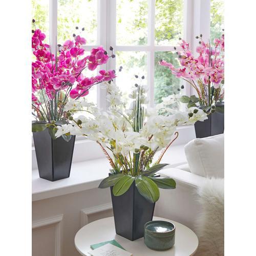 Orchidee im Topf IGEA Weiß