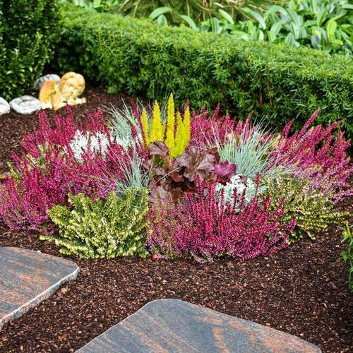 Set Grabbepflanzung Herbstgarten
