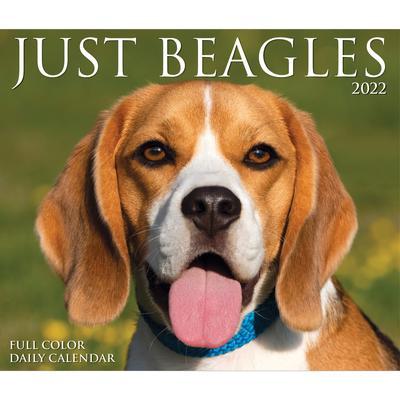 Willow Creek Press Beagles 2022 Box Calendar