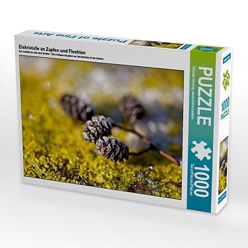 Eiskristalle an Zapfen und Flechten Foto-Puzzle Bild von bild-erzaehler Puzzle
