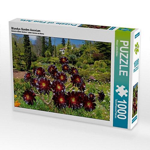 Blandys Garden Aeonium Foto-Puzzle Bild von Klaus Lielischkies Puzzle