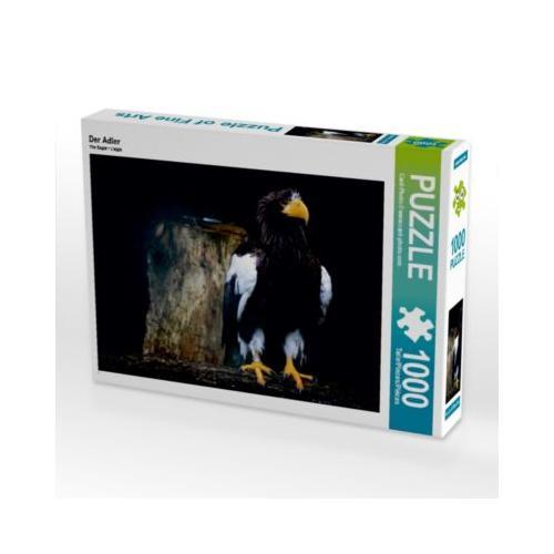 Der Adler Foto-Puzzle Bild von Norderneye Puzzle