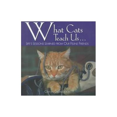 What Cats Teach Us... by Glenn Dromgoole (Hardcover - Willow Creek Pr)