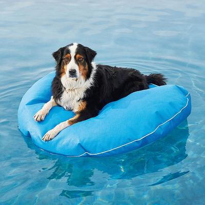 Dog Pool Float and Lounger - Pool Blue, Small: 30 dia. - Frontgate