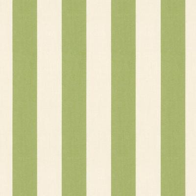 Canopy Stripe Kiwi & Sand Sunbrella Fabric by the Yard - Ballard Designs