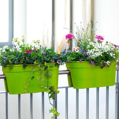 Geländertopf Flowerclip, 27 x 27,7 x 57,5 cm, grün