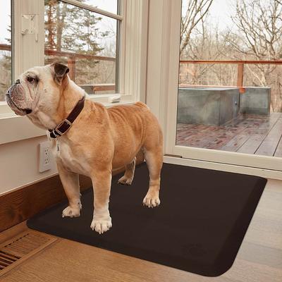 WellnessMats Squared Pet Mat - Golden Retreat, M - Frontgate