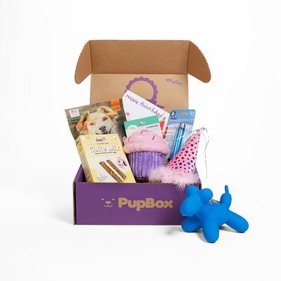 PupBox Birthday Girl Box, Large